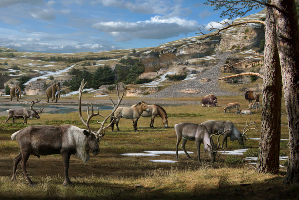 Example of Natural History Illustrations of my Favorite Epoch (the Pleistocene)